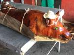 Cena Familiar para 50 personas La habana, Mayabeque y parte de Matanza
